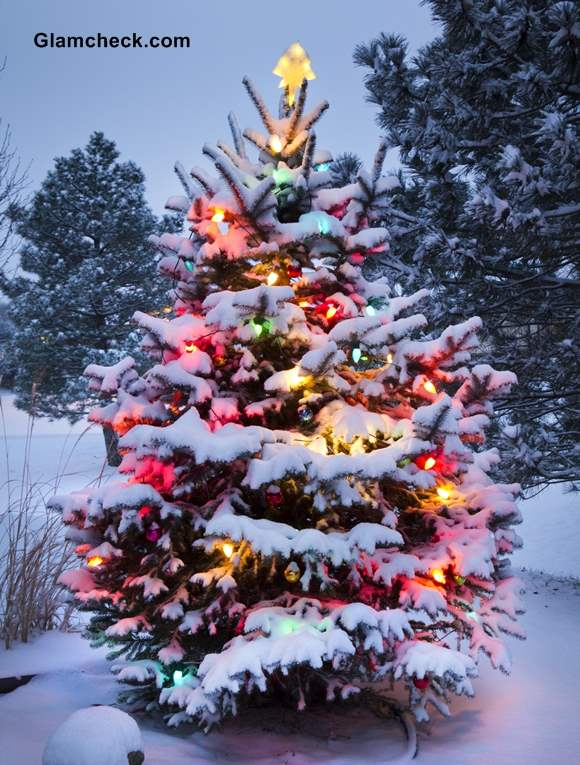 outdoor christmas tree decoration ideas