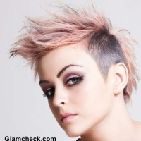Punk Hairstyle Mohawk Hair do