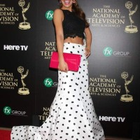 Chrishell Stause Dons Cropped Top Look for Emmys 2014