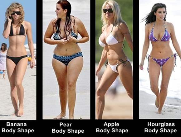 Average body type women